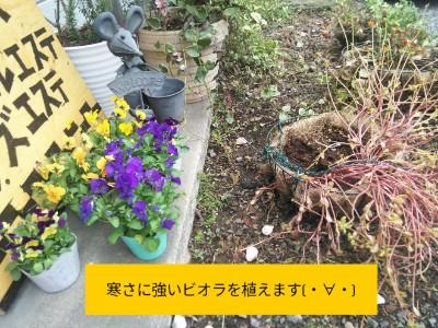 PicsArt_11-26-09.17.26