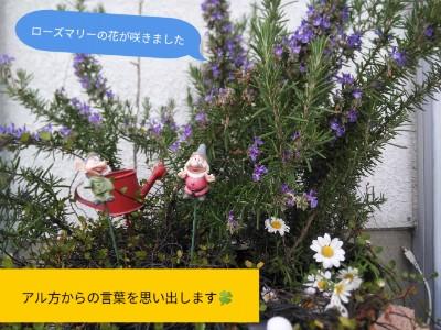 PicsArt_04-07-01.50.25