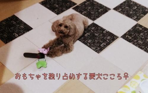 PicsArt_04-22-07.26.51