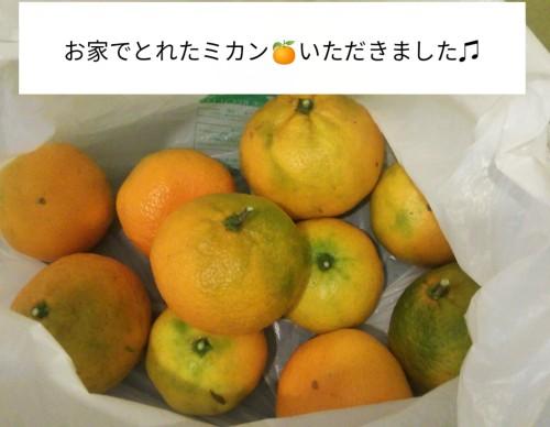 PicsArt_11-10-04.40.48