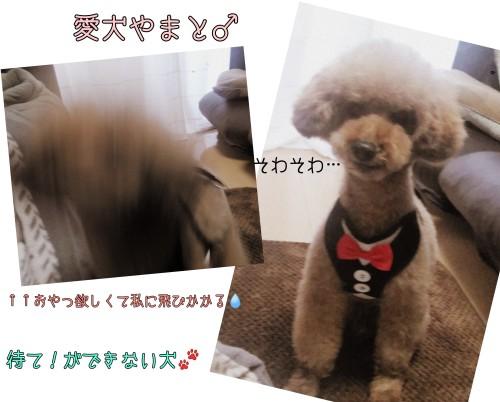 PicsArt_12-07-04.22.40