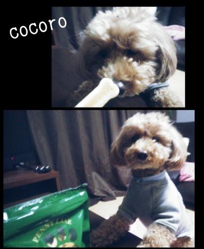 PicsArt_01-19-05.30.04